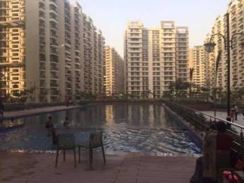 1560 sqft, 3 bhk Apartment in Builder Gaur City 1st Avenue Gaur City Noida Extension Greater Noida Gaur City 1, Greater Noida at Rs. 10501