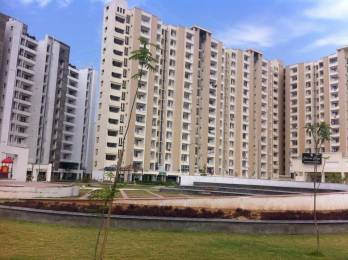1130 sqft, 2 bhk Apartment in SBP Housing Park Mohan Nagar, Dera Bassi at Rs. 29.9000 Lacs