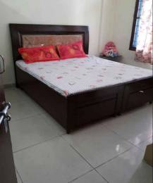 435 sqft, 1 bhk IndependentHouse in Builder Project Sector 38C, Chandigarh at Rs. 8000