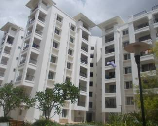 1750 sqft, 3 bhk Apartment in Value VDB Celadon Jakkur, Bangalore at Rs. 80.0000 Lacs