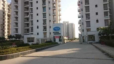 1446 sqft, 3 bhk Apartment in Piyush Heights Sector 89, Faridabad at Rs. 11000