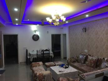 3825 sqft, 4 bhk BuilderFloor in RPS Palms Sector 88, Faridabad at Rs. 88.0000 Lacs