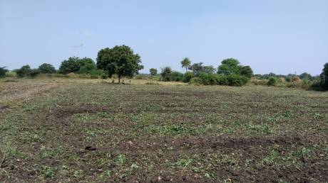 1998 sqft, Plot in Builder Bhrigu Silicon City 3 Kollur, Hyderabad at Rs. 34.4100 Lacs