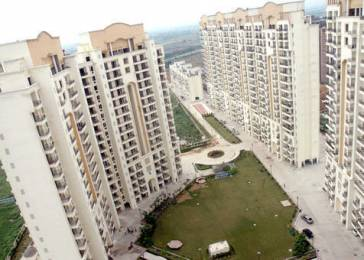 1875 sqft, 3 bhk Apartment in JMD Gardens Sector 33, Gurgaon at Rs. 1.1500 Cr