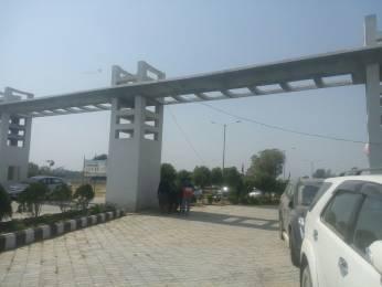 1250 sqft, Plot in Thakur Group Of Companies Maa Ambey Apartment Bhikharipur Rajatalab Road, Varanasi at Rs. 12.5000 Lacs