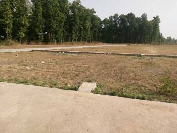 1800 sqft, Plot in Builder Hill Green Enclave Chakrata Road, Dehradun at Rs. 11.0000 Lacs