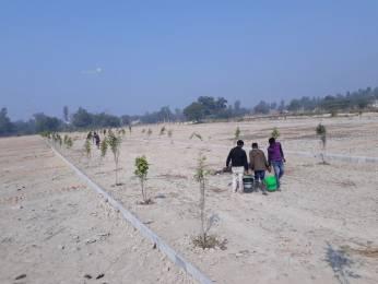 800 sqft, Plot in Builder VAIDIK VIHAR raibareli road nigohan, Lucknow at Rs. 3.6080 Lacs
