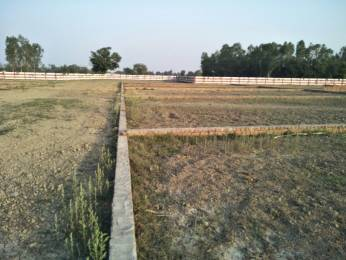 1800 sqft, Plot in Builder vaidik vihar Nigoha, Lucknow at Rs. 8.1000 Lacs