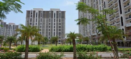 1900 sqft, 3 bhk Apartment in Godrej Nature Plus Sector 33 Sohna, Gurgaon at Rs. 96.0000 Lacs
