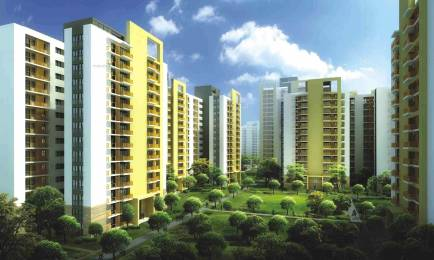 1750 sqft, 3 bhk Apartment in Silverglades The Melia Sector 35 Sohna, Gurgaon at Rs. 83.8000 Lacs