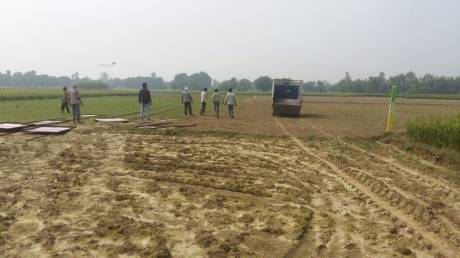 1200 sqft, Plot in Builder Project Safedabad, Lucknow at Rs. 8.4000 Lacs