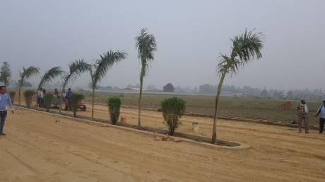 1000 sqft, Plot in Builder shine galaxy chaubeypur, Kanpur at Rs. 6.5100 Lacs