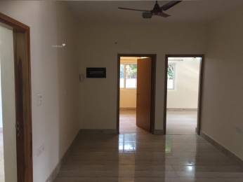 2000 sqft, 3 bhk Apartment in Builder Project Vasant Kunj, Delhi at Rs. 70000