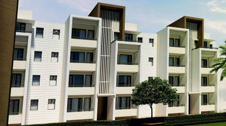 1080 sqft, 2 bhk Apartment in Ubber Palm Meadows Bhago Majra, Mohali at Rs. 24.9000 Lacs