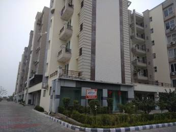 2150 sqft, 3 bhk Apartment in Shiwalik Palm City Sector 127 Mohali, Mohali at Rs. 53.0000 Lacs