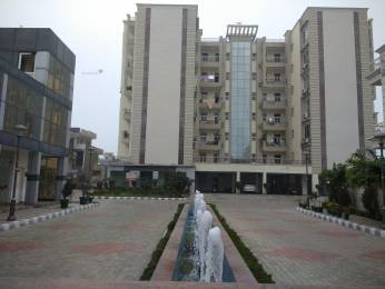 2150 sqft, 3 bhk Apartment in Builder acme shivalik heights Sector 127 Mohali, Mohali at Rs. 53.0000 Lacs
