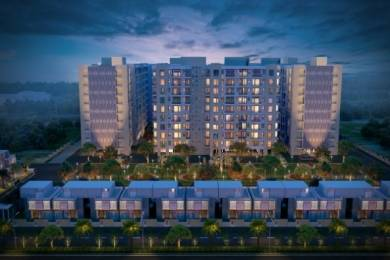 1588 sqft, 3 bhk Apartment in Mona City Sector 115 Mohali, Mohali at Rs. 36.9000 Lacs