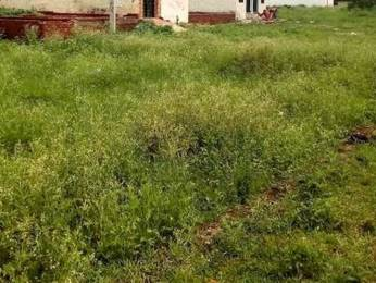 4500 sqft, Plot in Builder Project Sector 12A, Panchkula at Rs. 3.2500 Cr