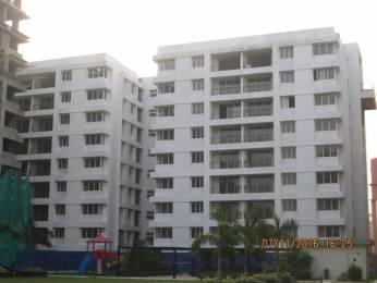1280 sqft, 2 bhk Apartment in Salarpuria Sattva Silver Oak Estate Prive Rajarhat, Kolkata at Rs. 72.0000 Lacs