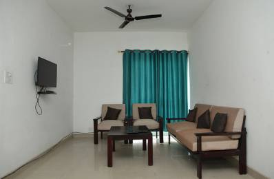 1200 sqft, 3 bhk BuilderFloor in Builder Project Sector 82, Faridabad at Rs. 23000