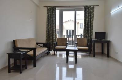 600 sqft, 1 bhk Apartment in Builder Project Sector 65, Gurgaon at Rs. 10500
