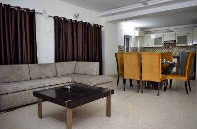 600 sqft, 1 bhk Apartment in Builder Project Sector 28, Faridabad at Rs. 10000