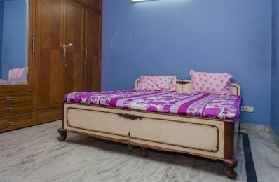 600 sqft, 1 bhk Apartment in Builder Project East of Kailash, Delhi at Rs. 14000
