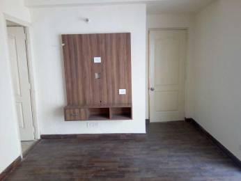 1070 sqft, 3 bhk Apartment in Builder Project Sector 137, Noida at Rs. 15000