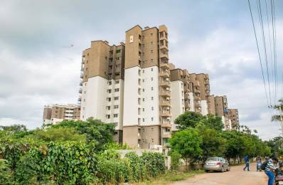 1300 sqft, 3 bhk Apartment in Builder Project Nagegowdanapalya, Bangalore at Rs. 20000