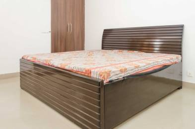1150 sqft, 3 bhk Apartment in Builder Project sector 74 noida, Noida at Rs. 18000