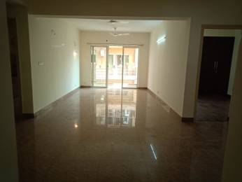 1900 sqft, 3 bhk Apartment in Builder Project Paras Tierea, Noida at Rs. 20000