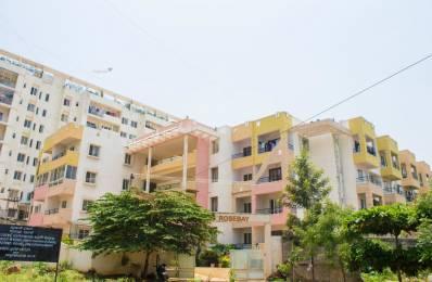 1000 sqft, 2 bhk Apartment in Builder Project Shree Ananth Nagar Layout Bangalore, Bangalore at Rs. 13000