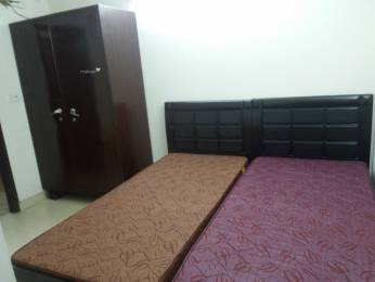 600 sqft, 1 bhk IndependentHouse in Builder Project Alaknanda DDA Flats Road, Delhi at Rs. 9000