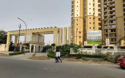1550 sqft, 3 bhk IndependentHouse in Builder Project Sector 119, Noida at Rs. 16000