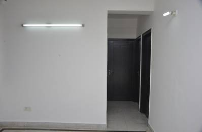 1600 sqft, 3 bhk Apartment in Builder Project Major Bhola Nath Colony, Delhi at Rs. 34000