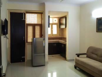 100 sqft, 1 bhk Apartment in Builder Project Shiksha Bharti School Road, Delhi at Rs. 20000