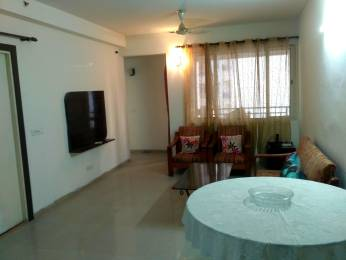 1300 sqft, 3 bhk Apartment in Builder Project Sector 134, Noida at Rs. 22000