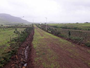 2250 sqft, Plot in Builder Project Pimplad Nasik, Nashik at Rs. 21.0000 Lacs