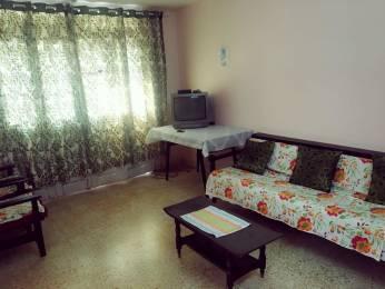 570 sqft, 1 bhk Apartment in Builder Apartment in Calangute Calangute, Goa at Rs. 32.0000 Lacs