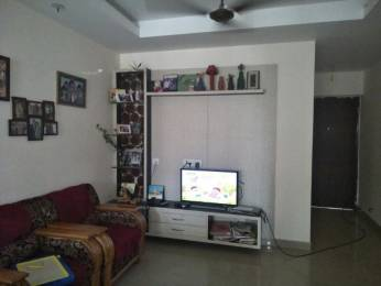 1785 sqft, 3 bhk Apartment in DN Northern Heights Patia, Bhubaneswar at Rs. 70.0000 Lacs