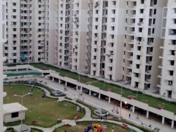 1325 sqft, 2 bhk Apartment in Builder Project Sector 82, Faridabad at Rs. 13000