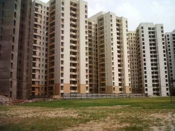1280 sqft, 3 bhk Apartment in Jaypee Kosmos Sector 134, Noida at Rs. 49.0000 Lacs