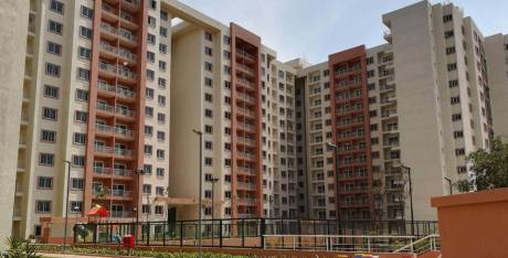 1300 sqft, 2 bhk Apartment in Builder Project Jakkur, Bangalore at Rs. 23000