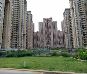 1056 sqft, 2 bhk Apartment in Bhartiya Nikoo Homes Kannur on Thanisandra Main Road, Bangalore at Rs. 21000