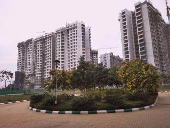 1232 sqft, 2 bhk Apartment in Purva Palm Beach Narayanapura on Hennur Main Road, Bangalore at Rs. 78.0000 Lacs