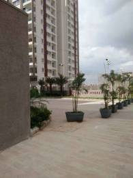 1300 sqft, 2 bhk Apartment in Arvind Sporcia Thanisandra, Bangalore at Rs. 23000