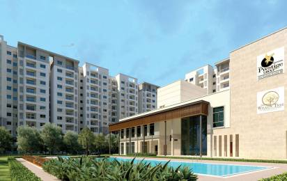 1154 sqft, 2 bhk Apartment in Prestige Willow Tree Vidyaranyapura, Bangalore at Rs. 86.0000 Lacs