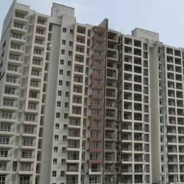 481 sqft, 1 bhk Apartment in AVL AVL 36 Sector 36A, Gurgaon at Rs. 17.0000 Lacs