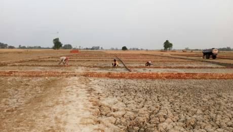 1000 sqft, Plot in Builder Project Naini, Allahabad at Rs. 5.5100 Lacs