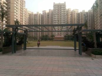 955 sqft, 2 bhk Apartment in Builder Nirala state Noida Extension, Greater Noida at Rs. 8500